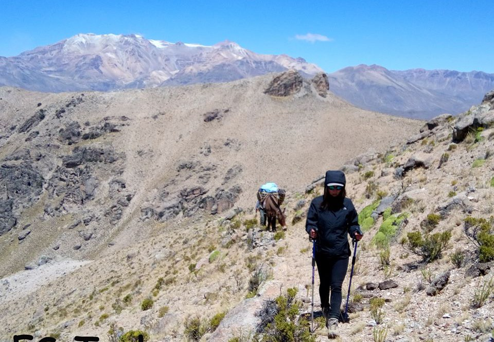 Colca Canyon 4D/3N BOMBOYA Alternative